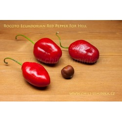 Rocoto Ecuadorian Red Pepper For Hell - semena