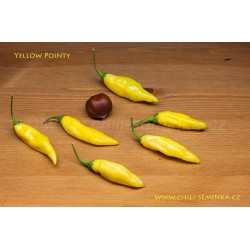 Yellow Pointy - semena