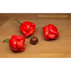 Trinidad Sunrise Scorpion - semena